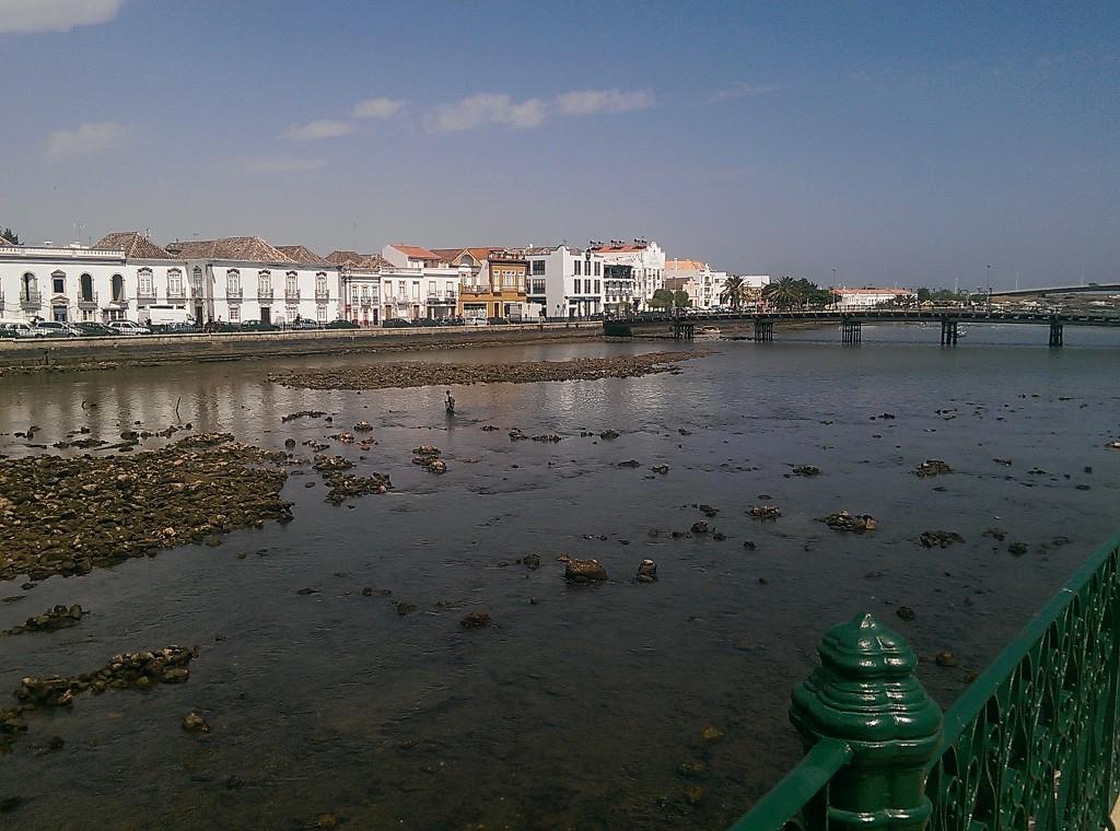 Isla de Tavira: Ria Fromosa